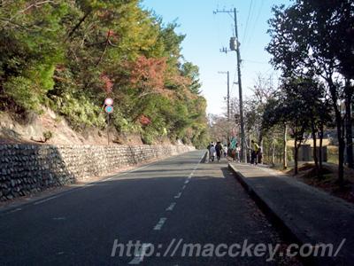 宮島マラソン コースの一部