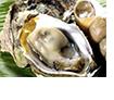 牡蠣サムネ+