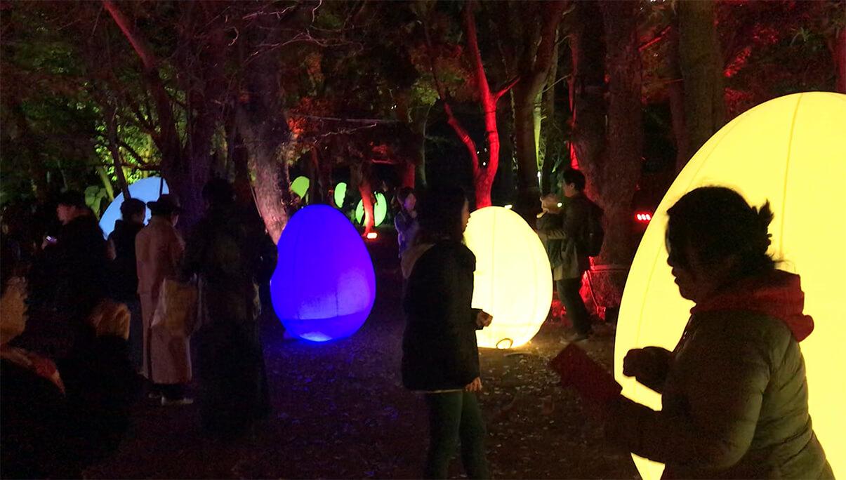 広島城の「チームラボ 光の祭」に行ってきた!動画もあるよ